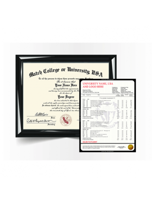 replacement college university diploma degree with transcript mark sheet