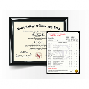 College University Diploma Match with Transcript, USA