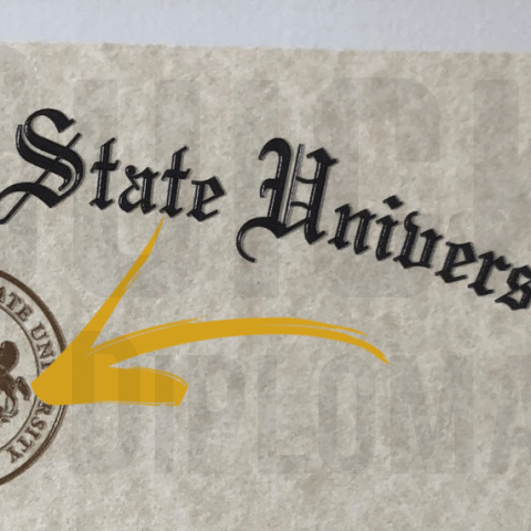Quick Diplomas offers documents with raised or embossed artwork or text! Purchase services here if forgot.